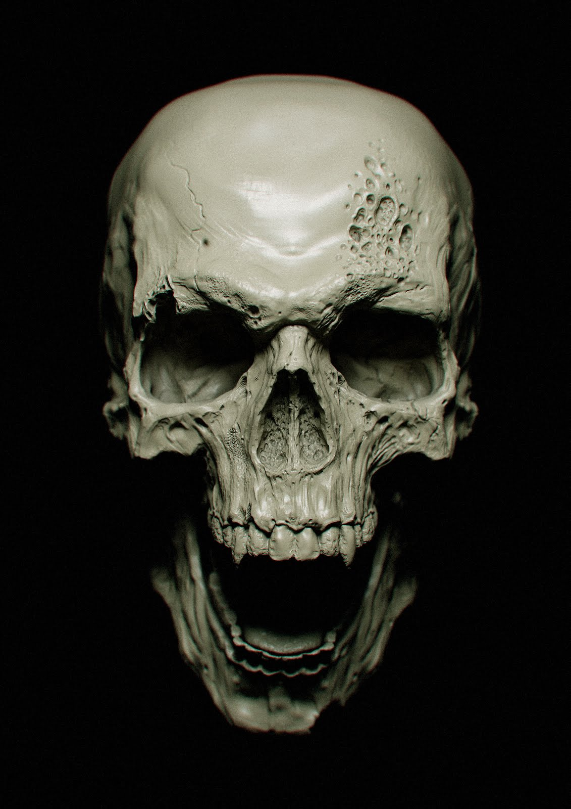 Skull High Quality Background on Wallpapers Vista