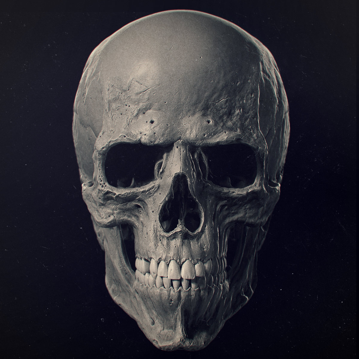 Skull Backgrounds, Compatible - PC, Mobile, Gadgets| 1200x1200 px