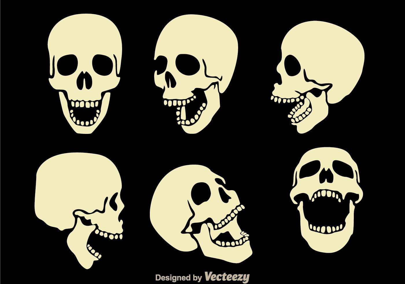 HQ Skull Wallpapers | File 79.63Kb