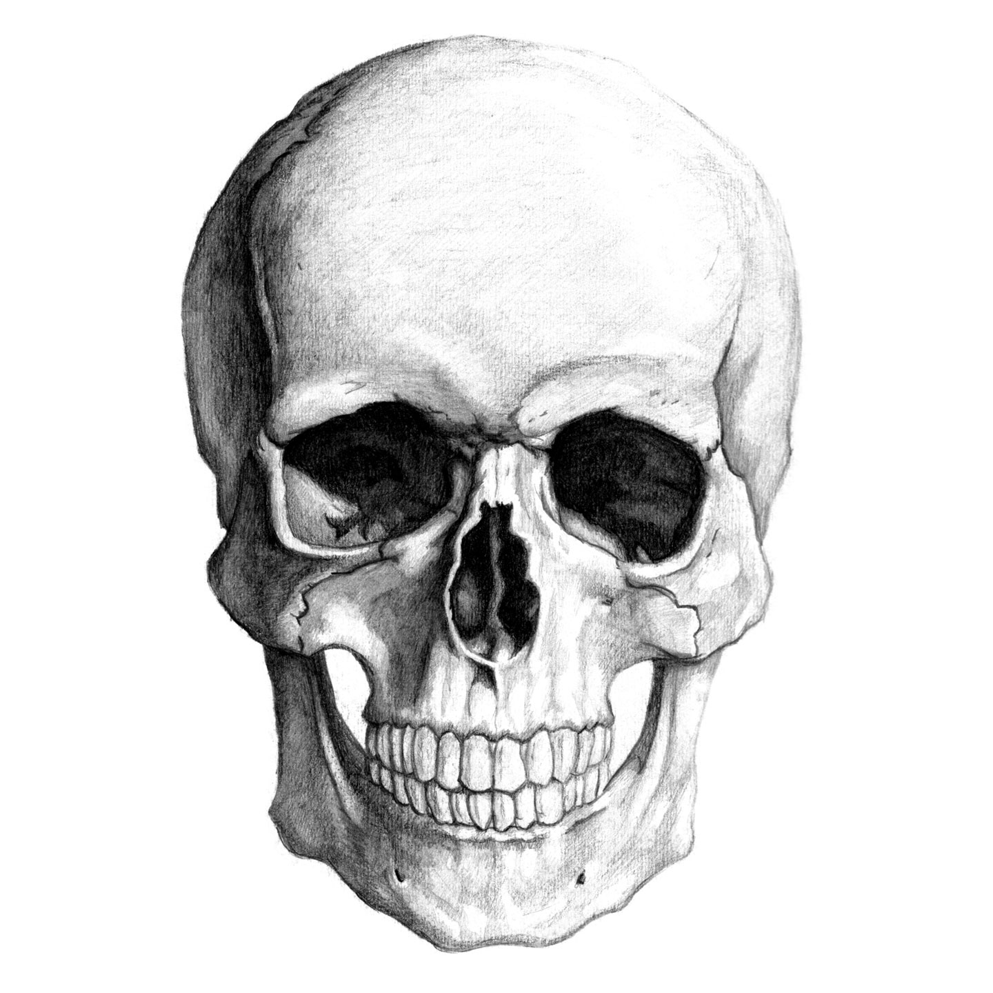 Nice wallpapers Skull 1440x1440px