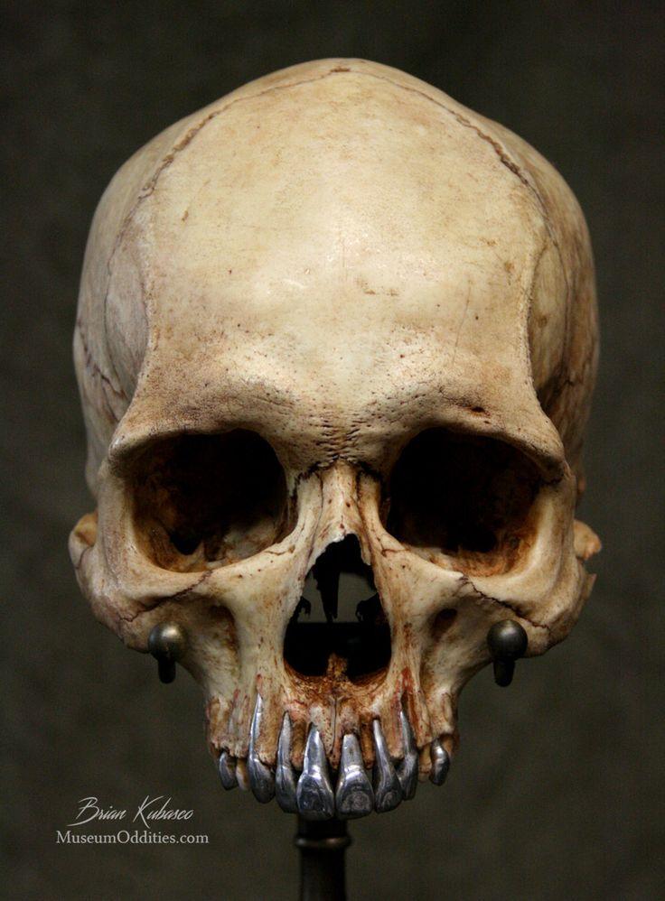 High Resolution Wallpaper | Skull 736x998 px
