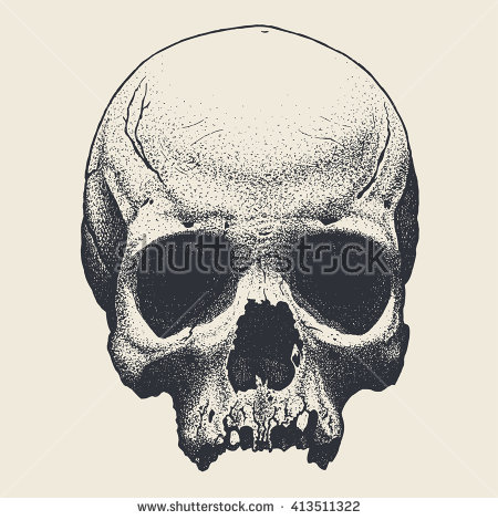 Skull Backgrounds, Compatible - PC, Mobile, Gadgets| 450x470 px