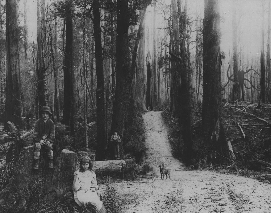 Amazing Slender Man Pictures & Backgrounds
