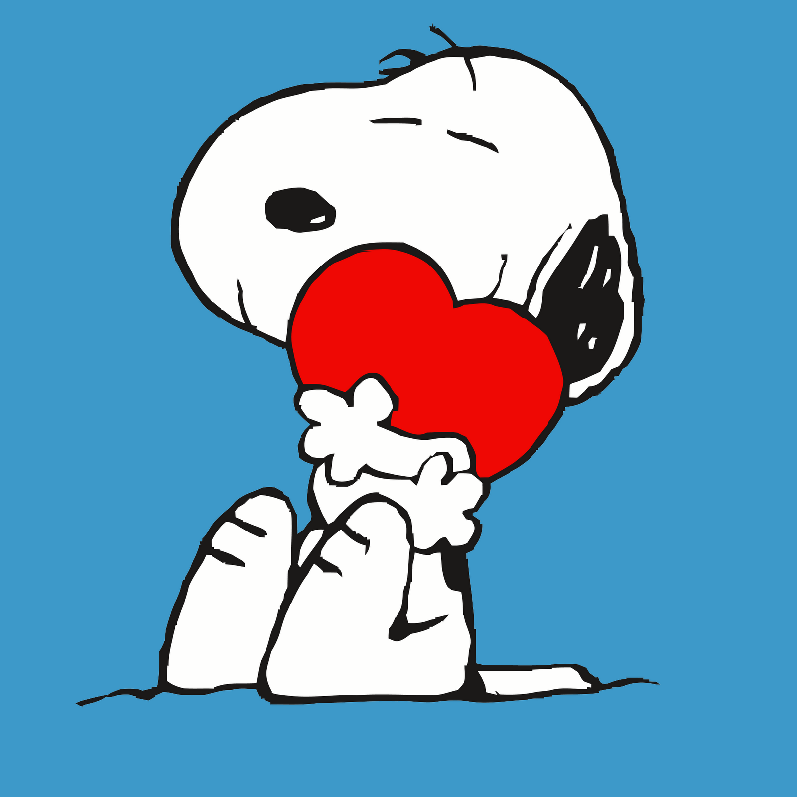 High Resolution Wallpaper   Snoopy 1600x1600 px