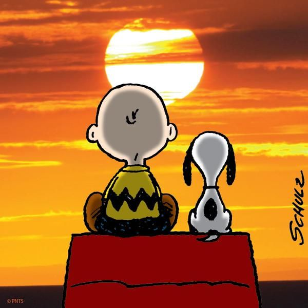 HD Quality Wallpaper   Collection: Artistic, 600x600 Snoopy
