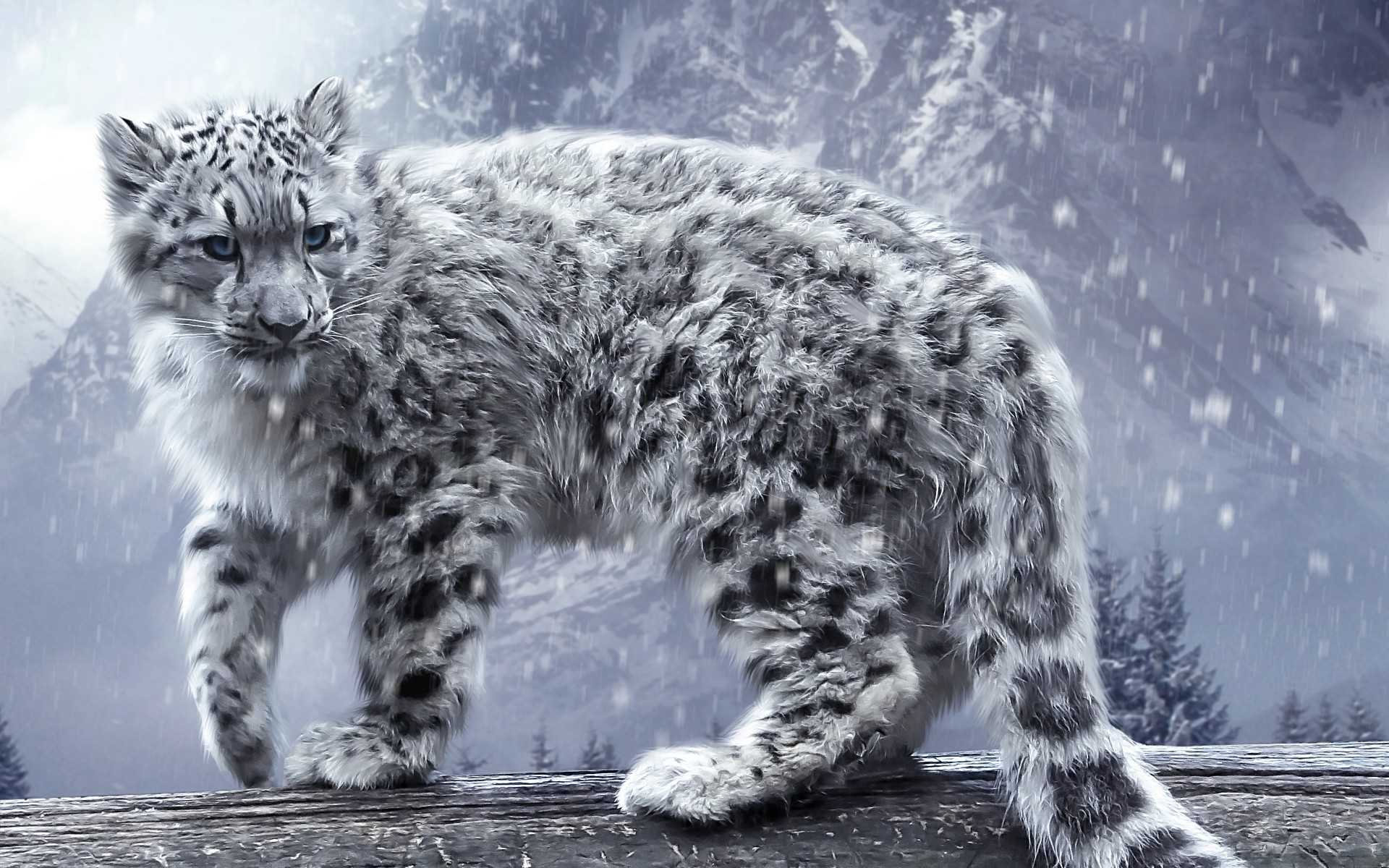 HQ Snow Leopard Wallpapers | File 558.36Kb