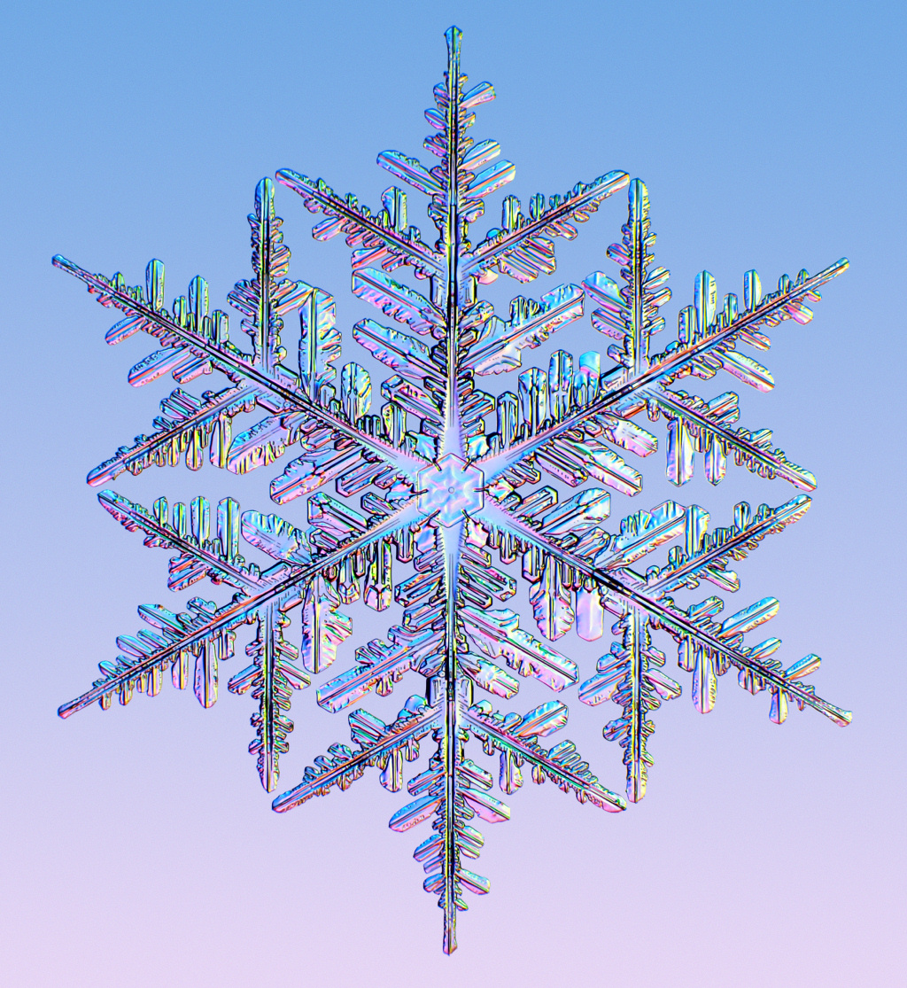 HD Quality Wallpaper | Collection: Artistic, 1024x1115 Snowflake