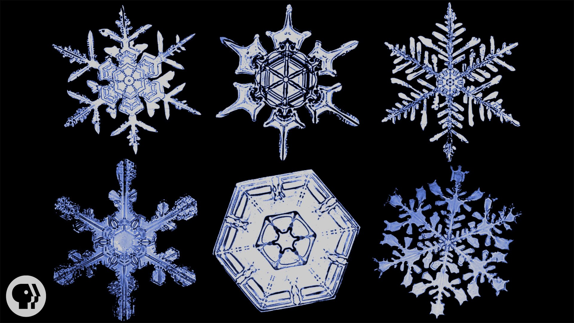 HD Quality Wallpaper | Collection: Artistic, 1920x1080 Snowflake