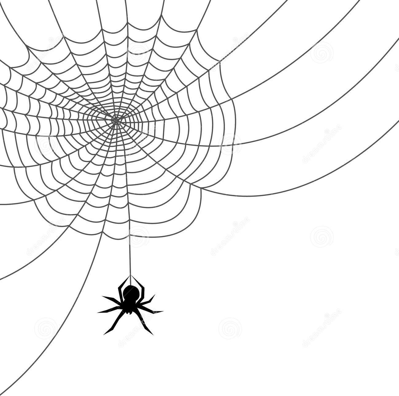 Spider Web #9