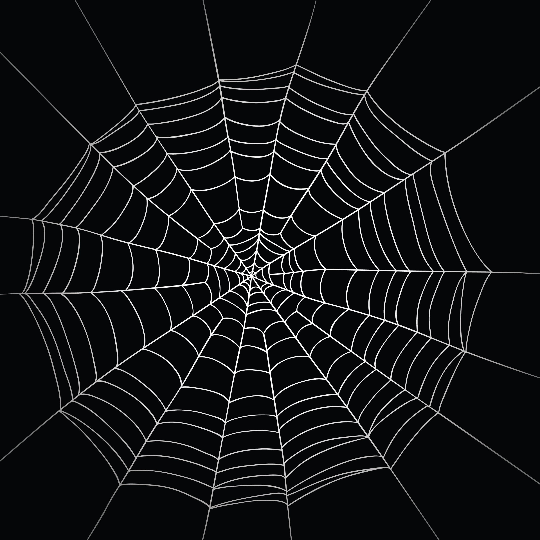 Spider Web #7