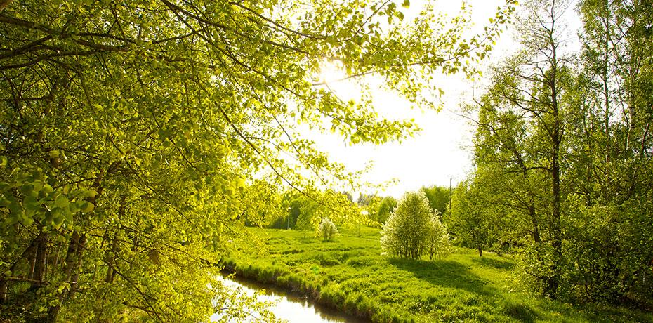High Resolution Wallpaper   Spring 930x460 px