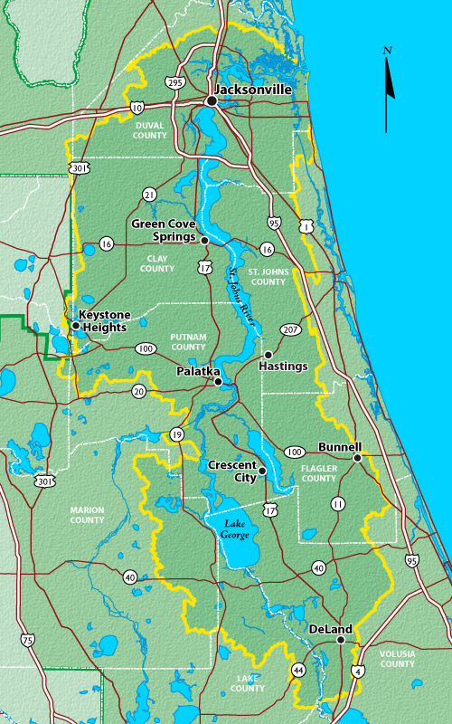 Images of St. Johns River   500x800