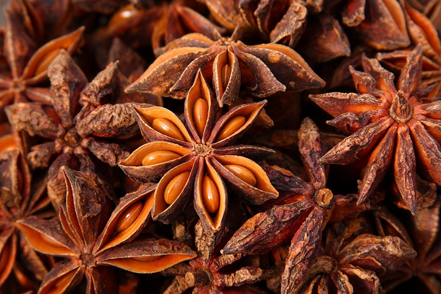 Images of Star Anise   1500x1000