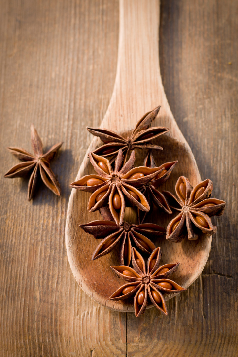 Star Anise Backgrounds, Compatible - PC, Mobile, Gadgets  483x725 px