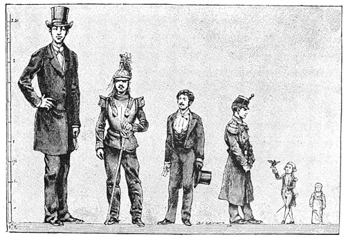 Stature Pics, Comics Collection