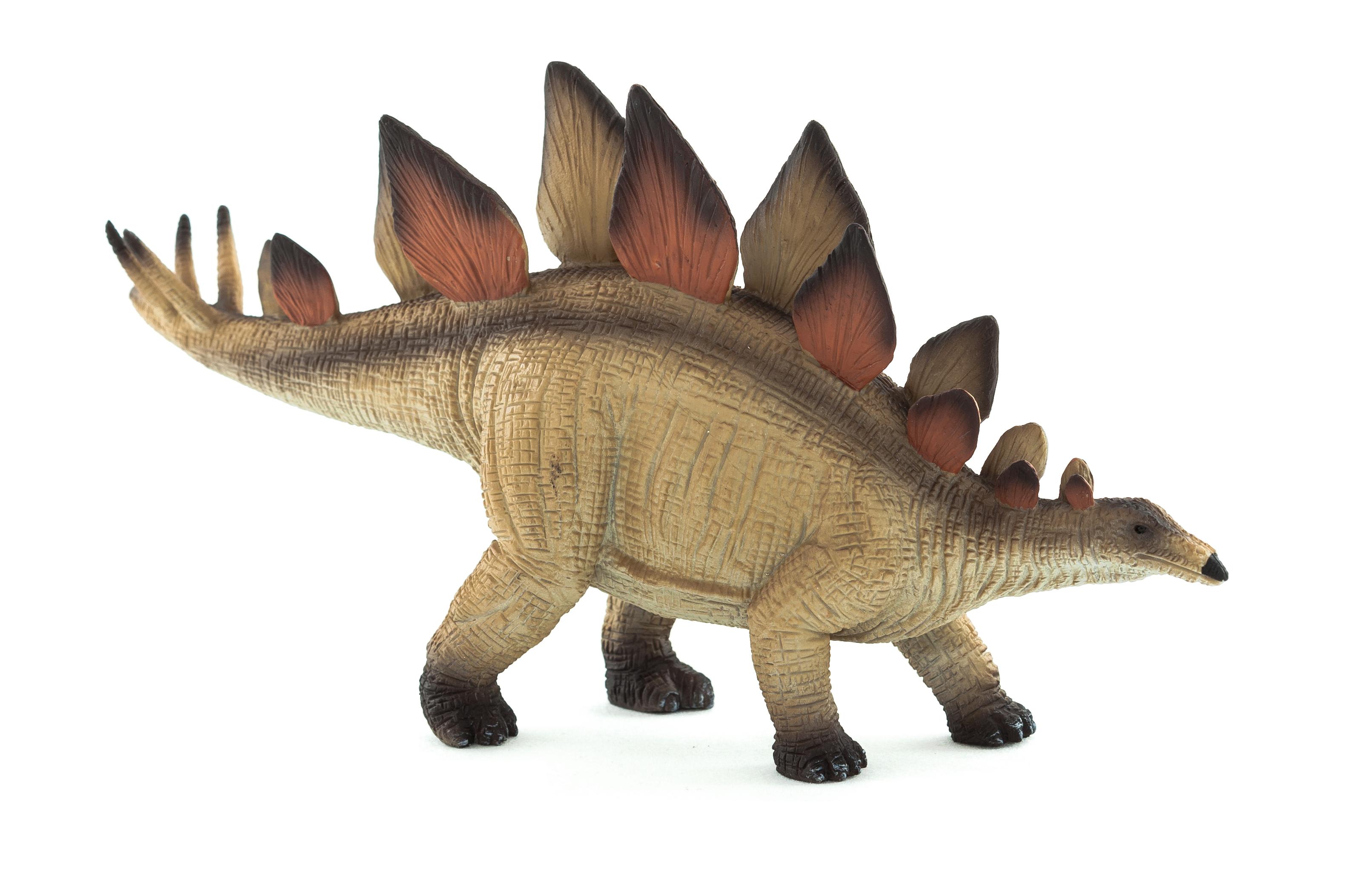 HD Quality Wallpaper   Collection: Animal, 3174x2106 Stegosaurus