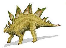 Nice wallpapers Stegosaurus 220x160px