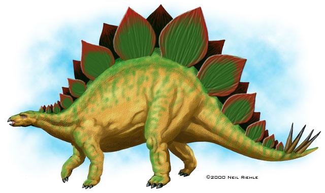 HQ Stegosaurus Wallpapers   File 50.28Kb
