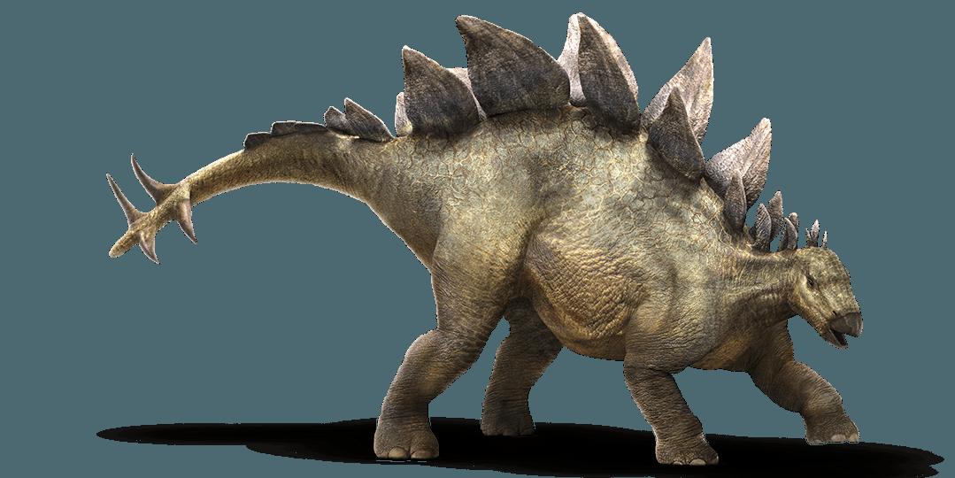 Nice wallpapers Stegosaurus 1079x540px