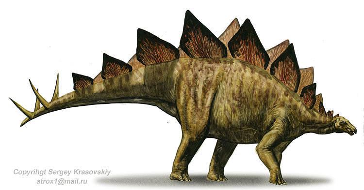 Stegosaurus Backgrounds on Wallpapers Vista