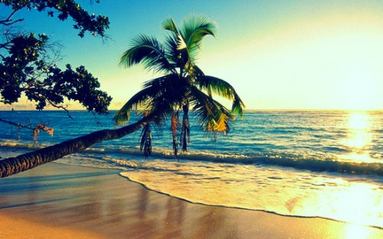 Nice wallpapers Summer 432x270px