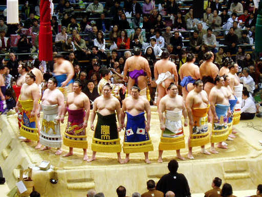 Nice wallpapers Sumo Gathering 512x384px