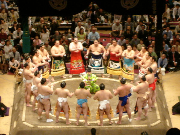 Nice wallpapers Sumo Gathering 600x450px