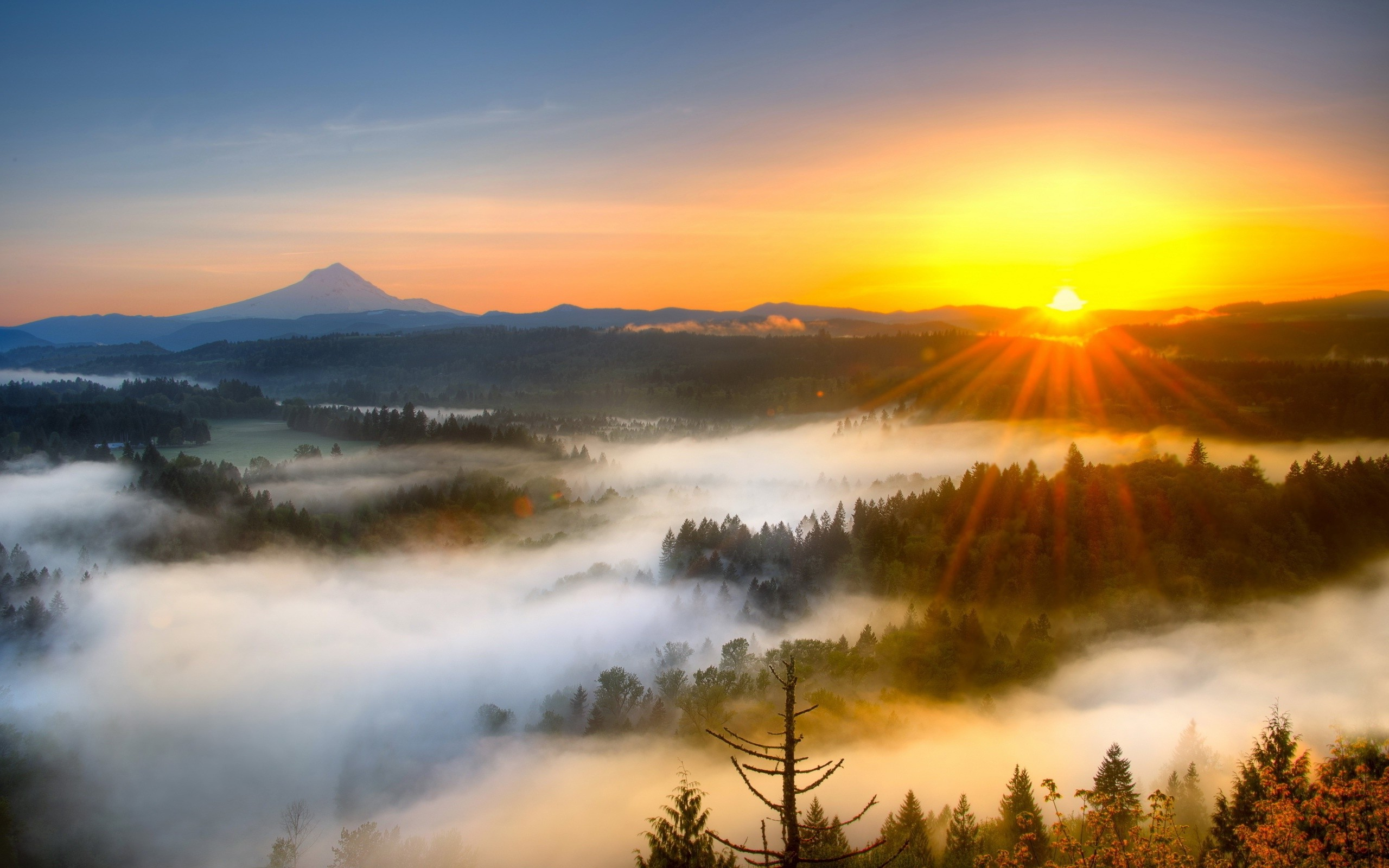 Sunrise Backgrounds, Compatible - PC, Mobile, Gadgets| 2560x1600 px