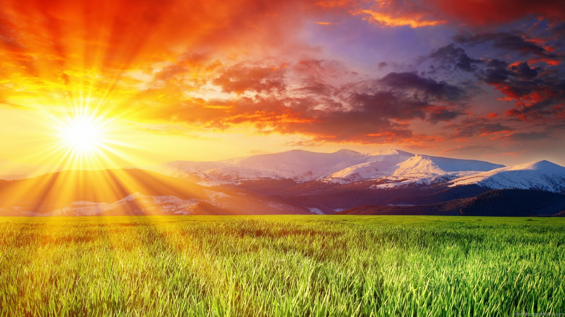 Nice Images Collection: Sunrise Desktop Wallpapers