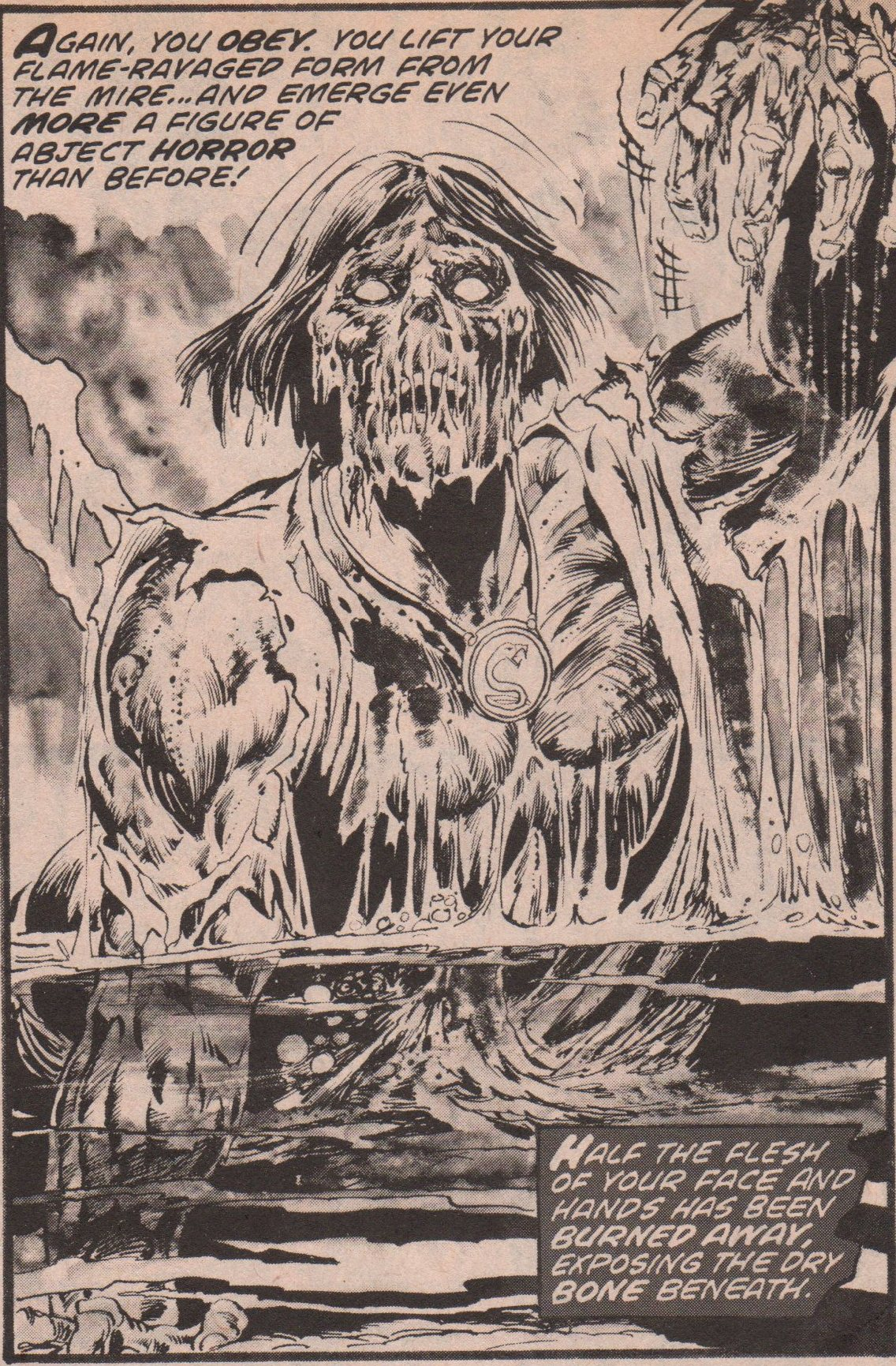 Tales Of The Zombie Pics, Comics Collection