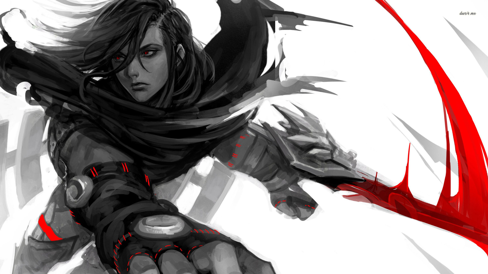 High Resolution Wallpaper | Talon 1920x1080 px