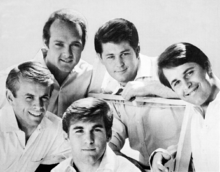 The Beach Boys Backgrounds, Compatible - PC, Mobile, Gadgets| 220x172 px