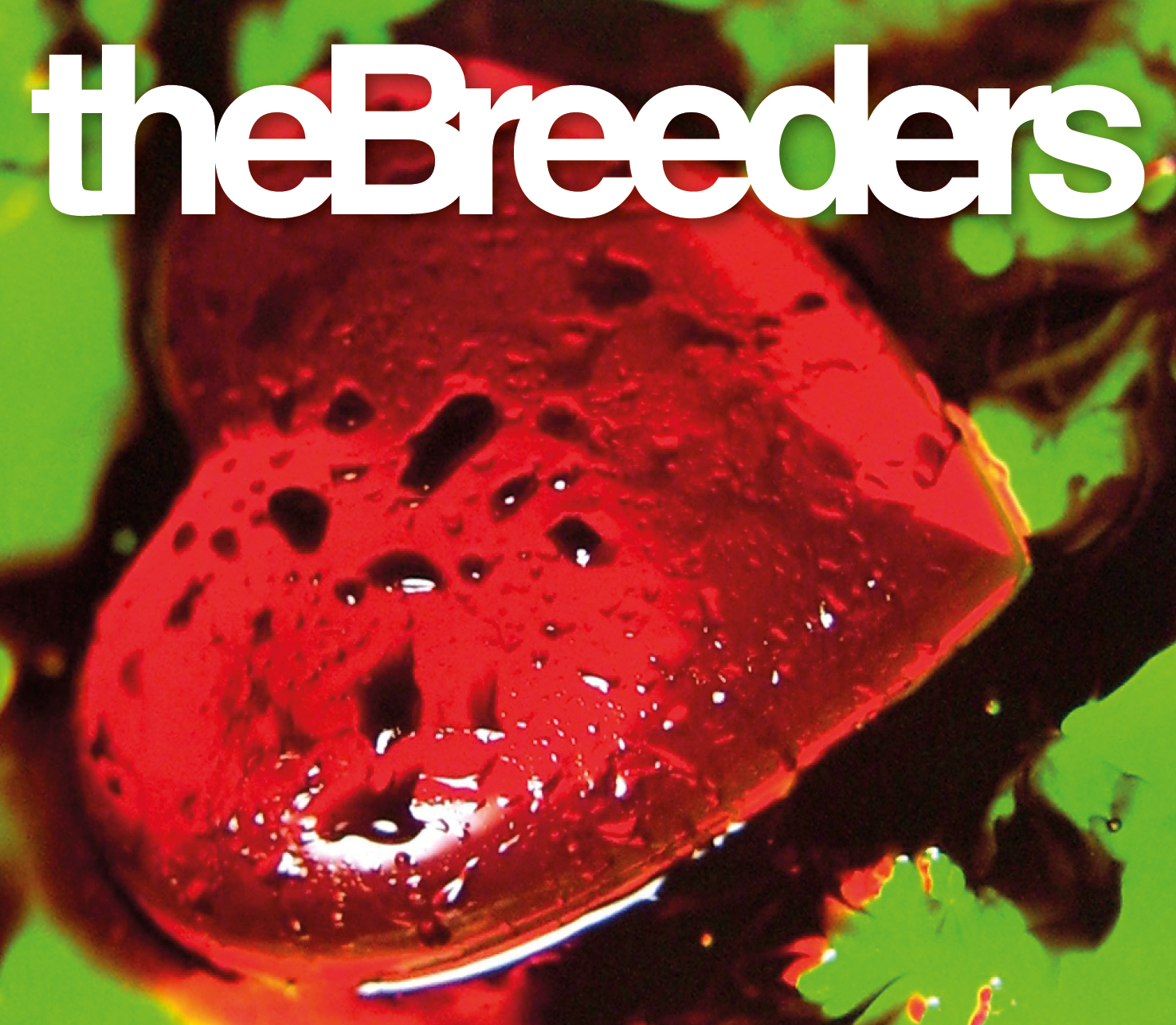The Breeders High Quality Background on Wallpapers Vista