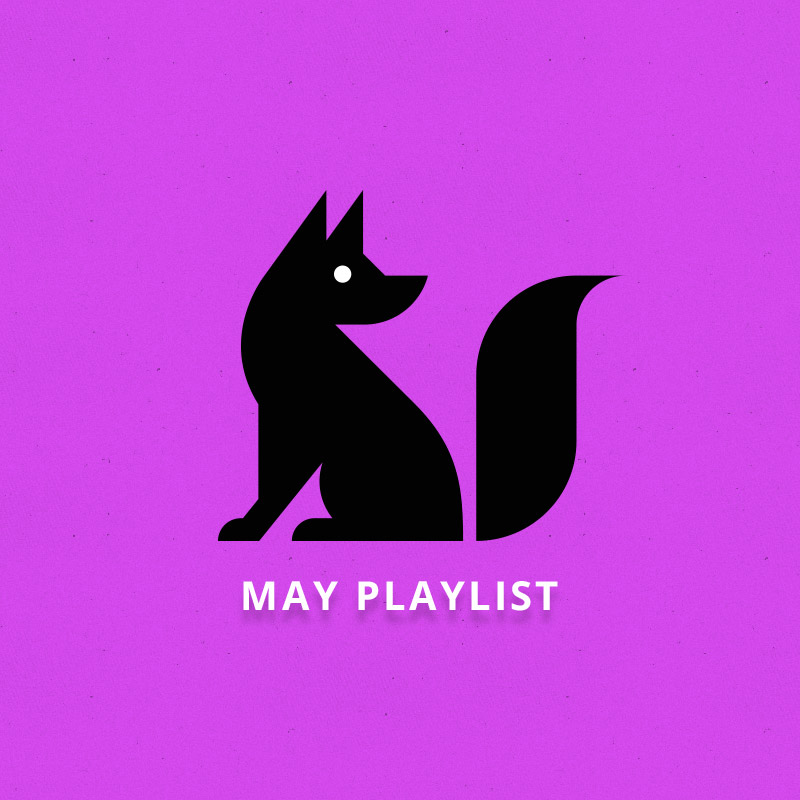 HQ The Fox Is Black  Wallpapers | File 90.5Kb