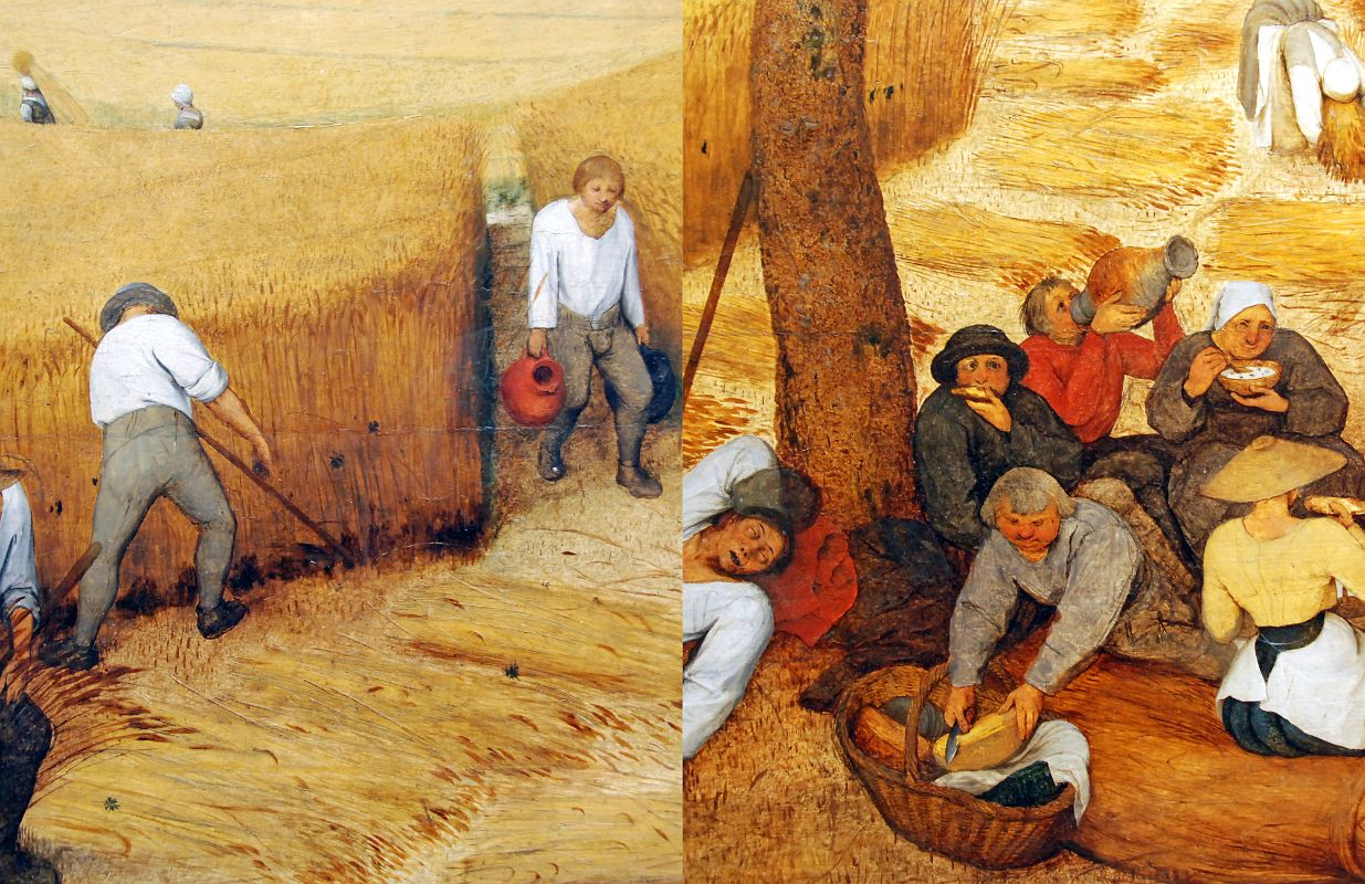 Amazing The Harvesters Pictures & Backgrounds