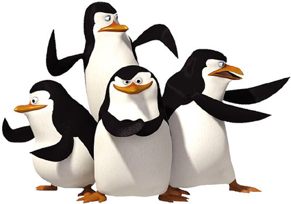 Nice wallpapers The Penquins Of Madagascar 425x298px