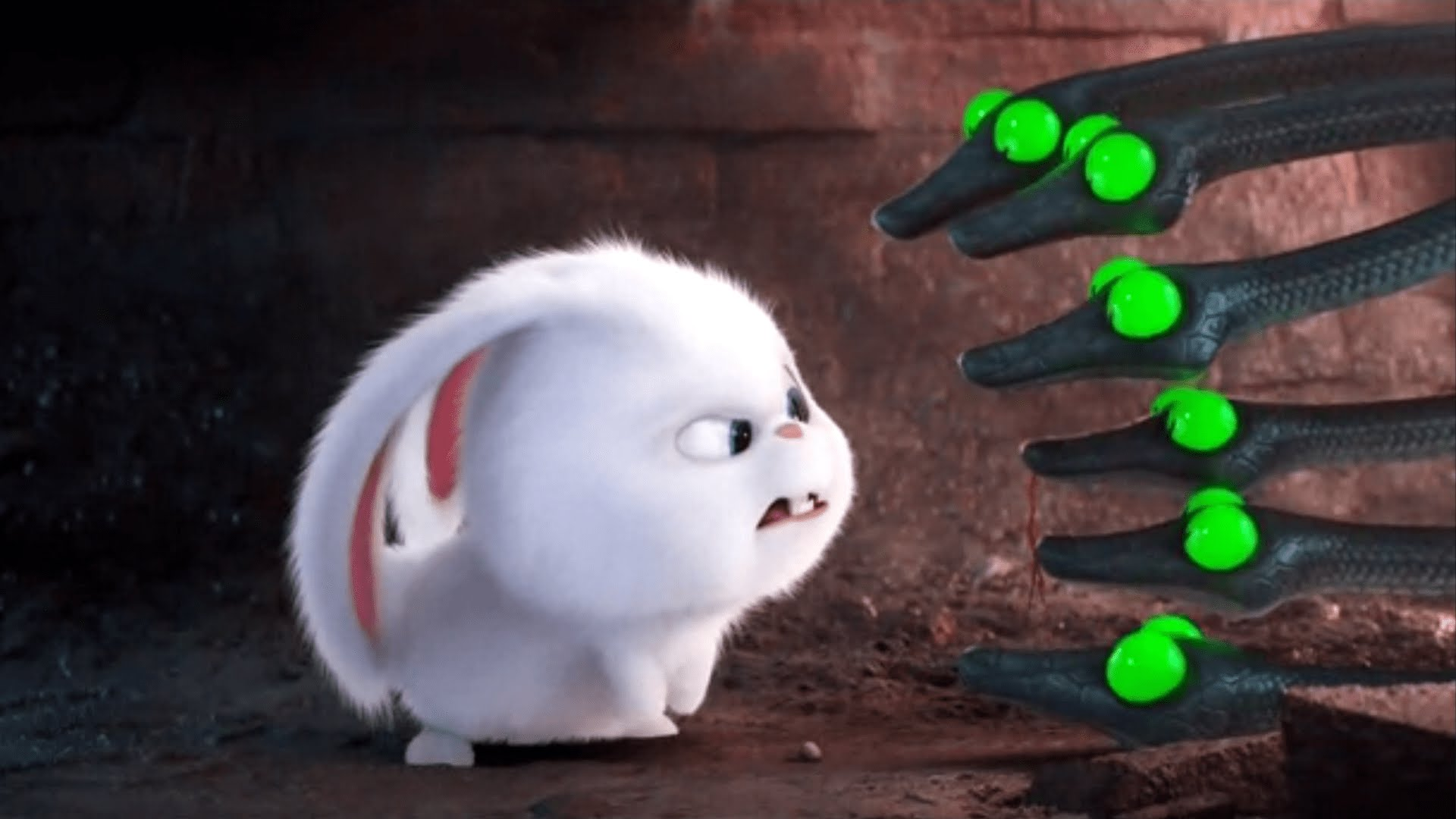The Secret Life Of Pets Wallpapers Movie Hq The Secret Life Of