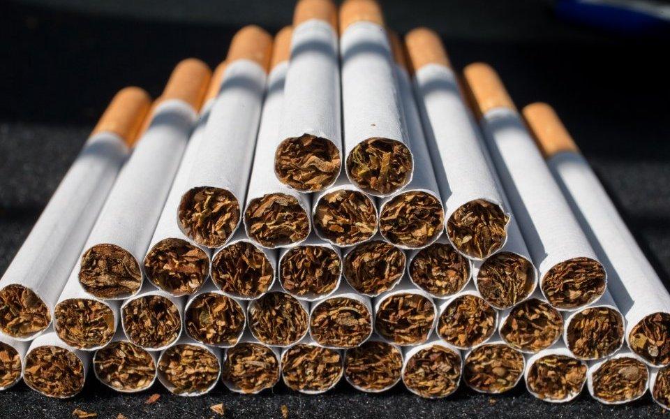 Tobacco Backgrounds, Compatible - PC, Mobile, Gadgets| 960x600 px