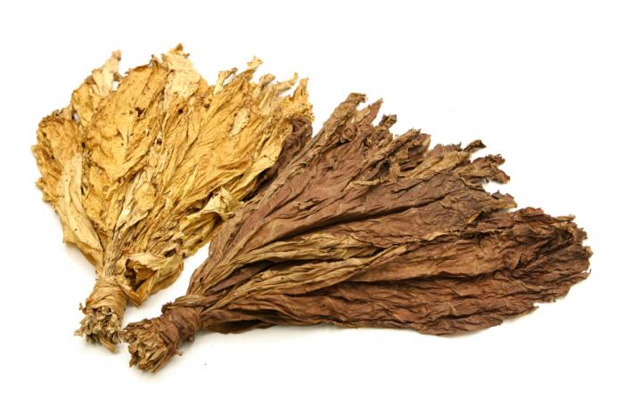 Nice wallpapers Tobacco 700x466px