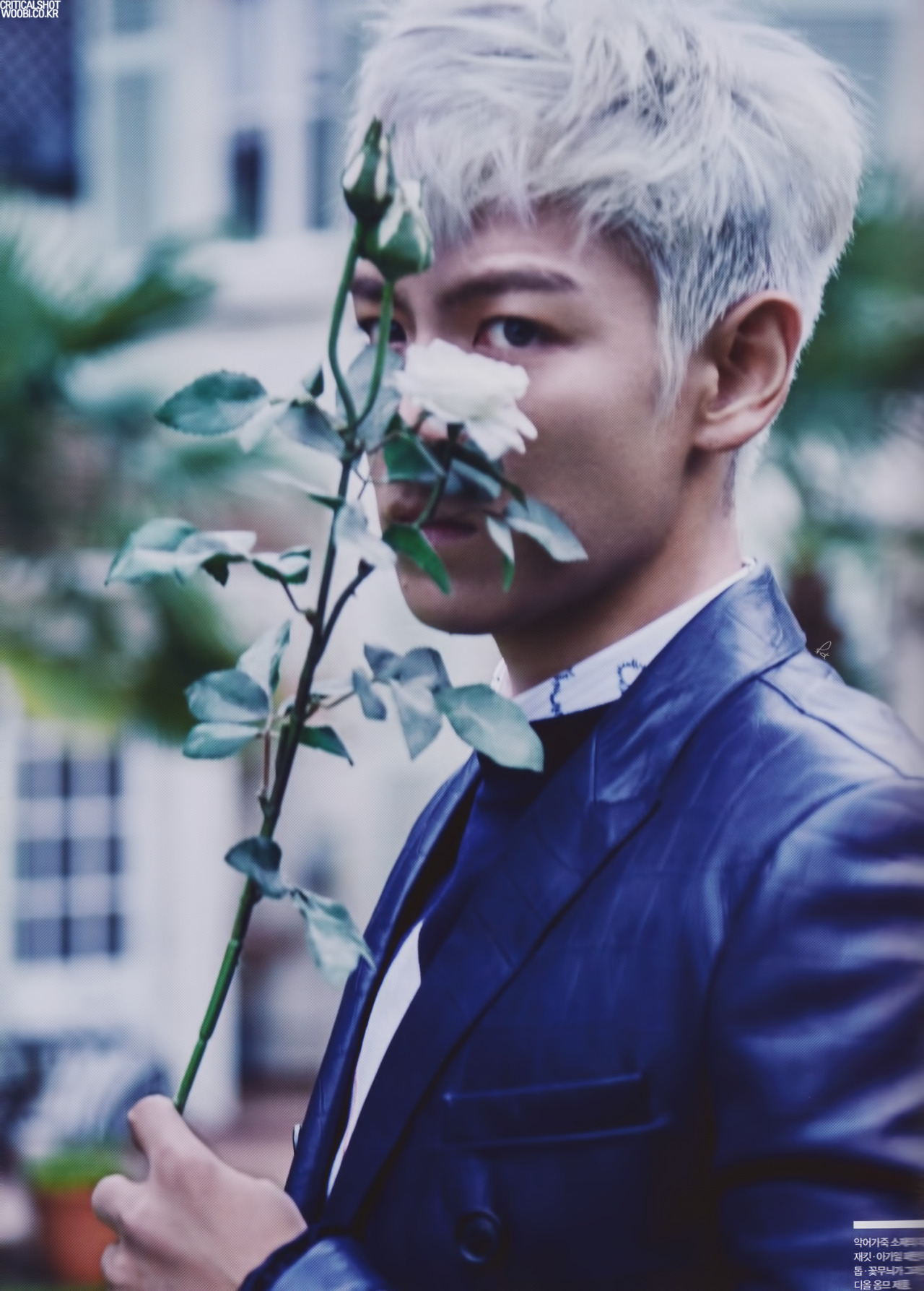 Nice wallpapers T.O.P 1280x1787px