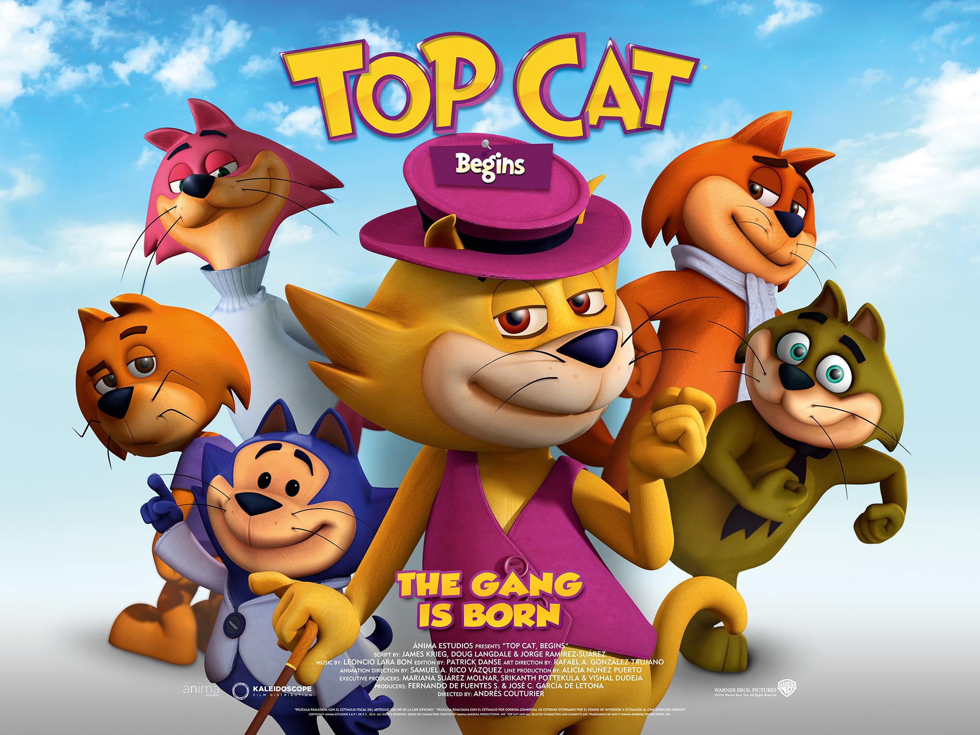 Nice Images Collection: Top Cat Desktop Wallpapers