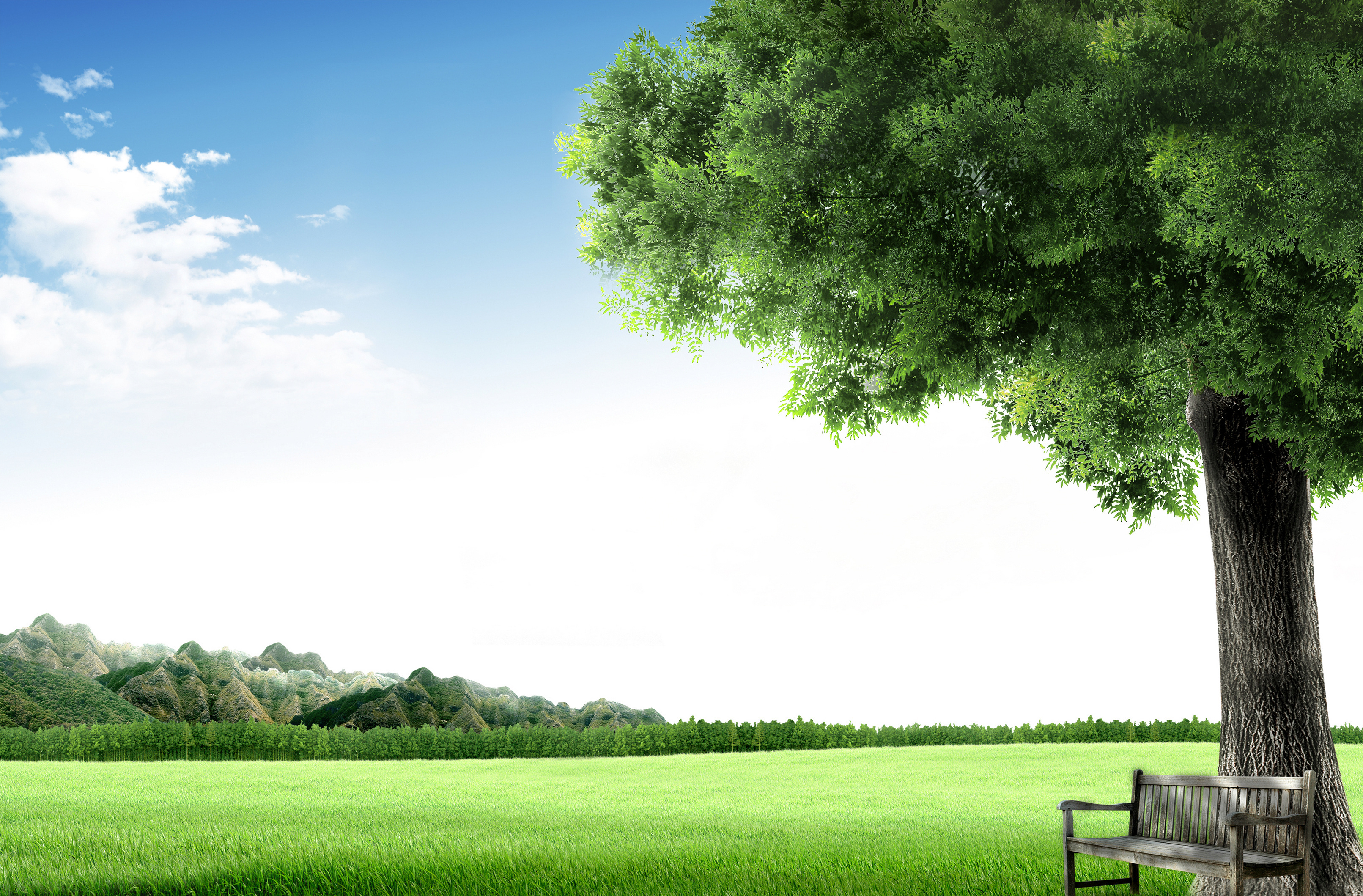Amazing Tranquil Pictures & Backgrounds