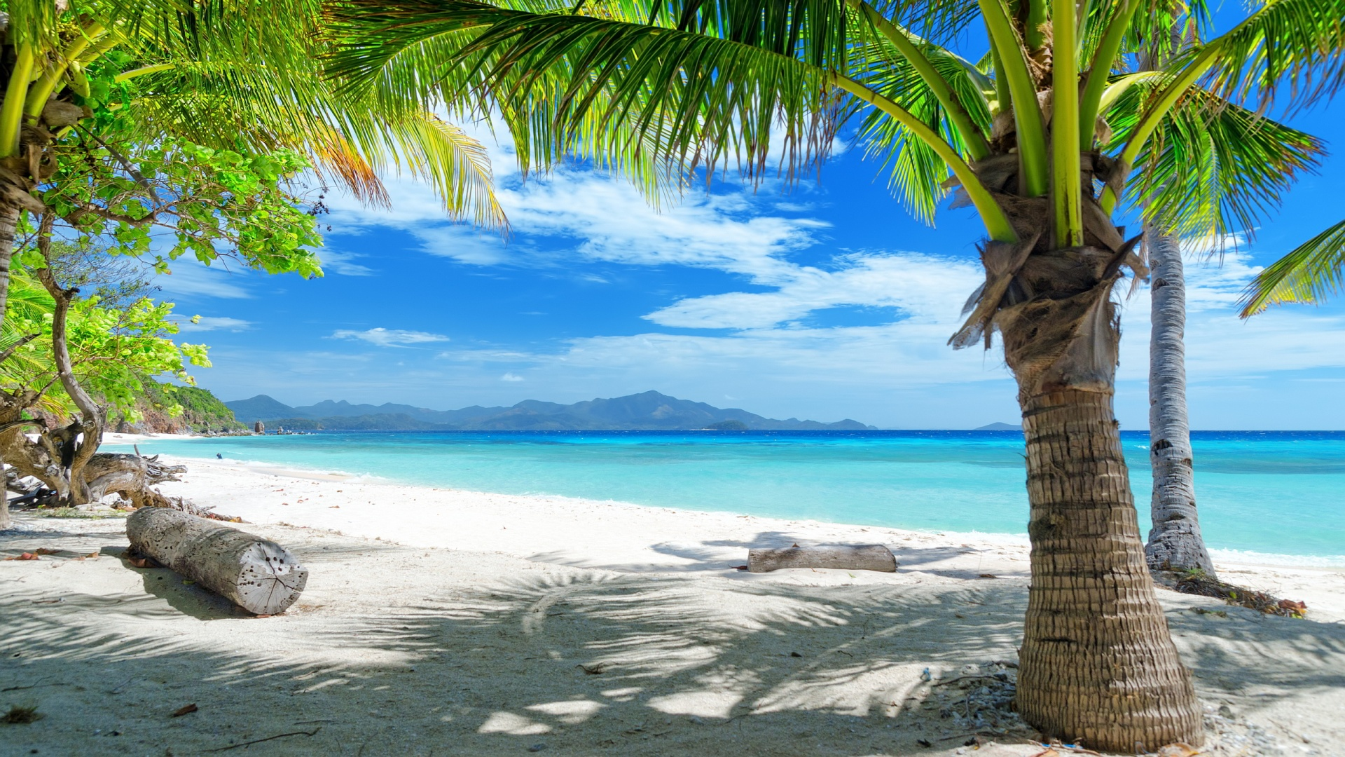 Tropical Backgrounds, Compatible - PC, Mobile, Gadgets| 1920x1080 px