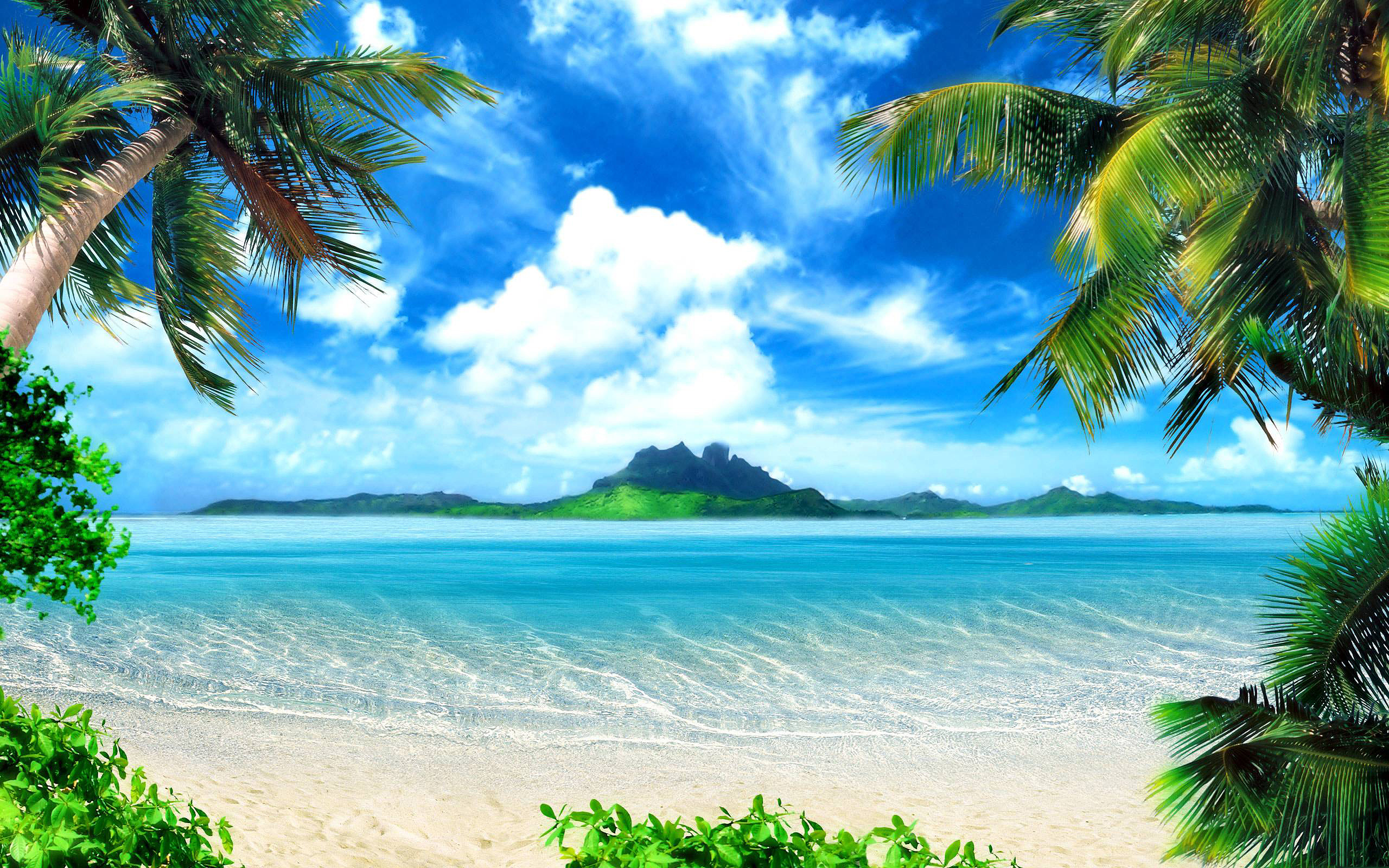 Tropical Backgrounds, Compatible - PC, Mobile, Gadgets| 2560x1600 px