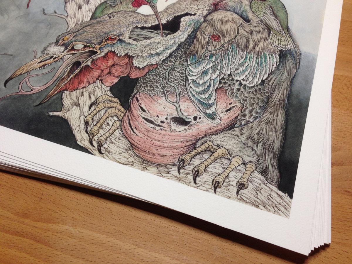 Amazing Tuō Tuō Pictures & Backgrounds