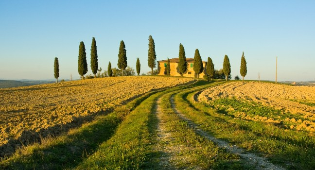 Images of Tuscany | 648x350