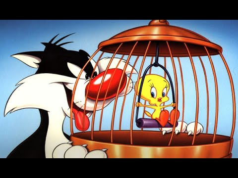 Tweety And Sylvester #16