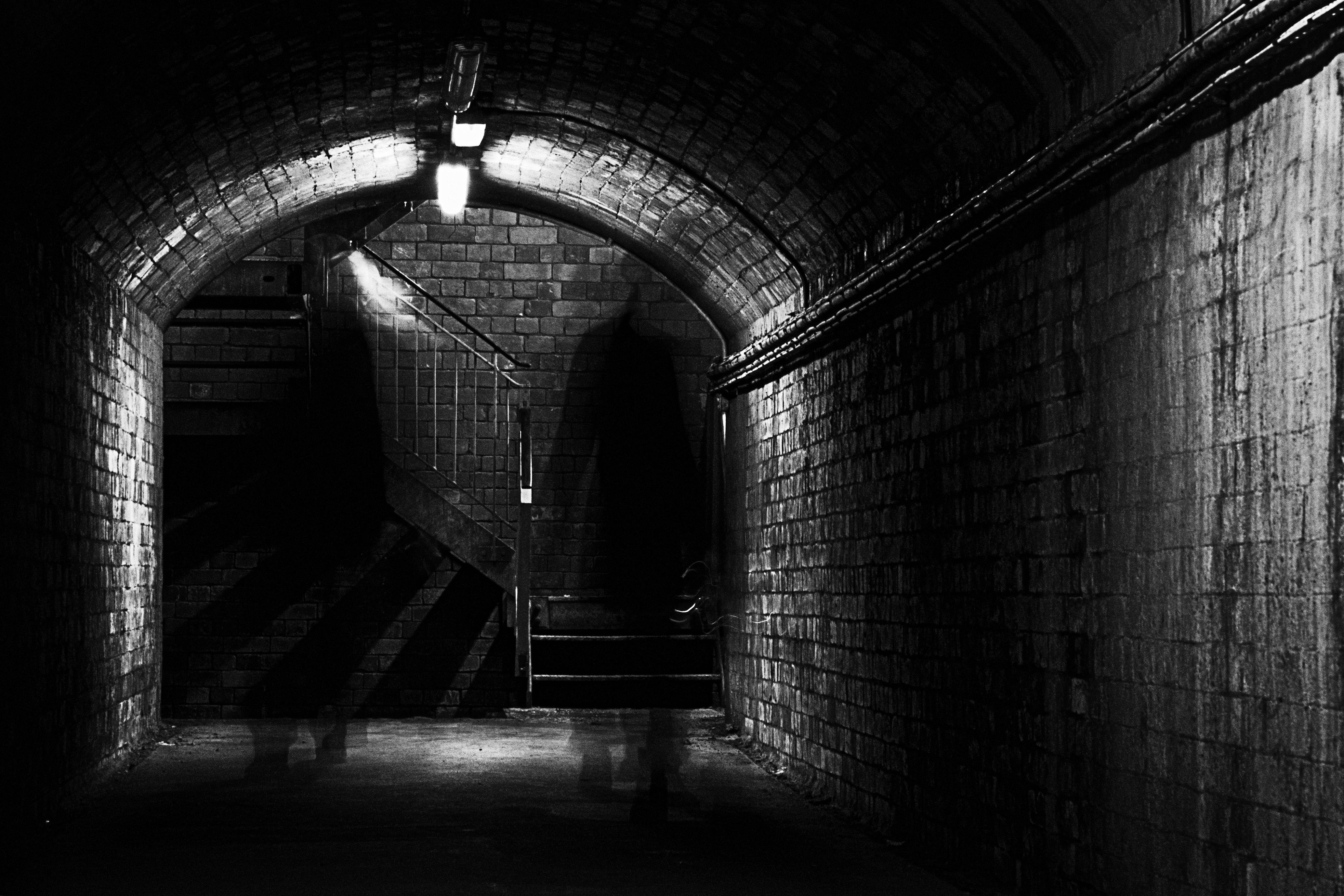 Underground Pics, TV Show Collection