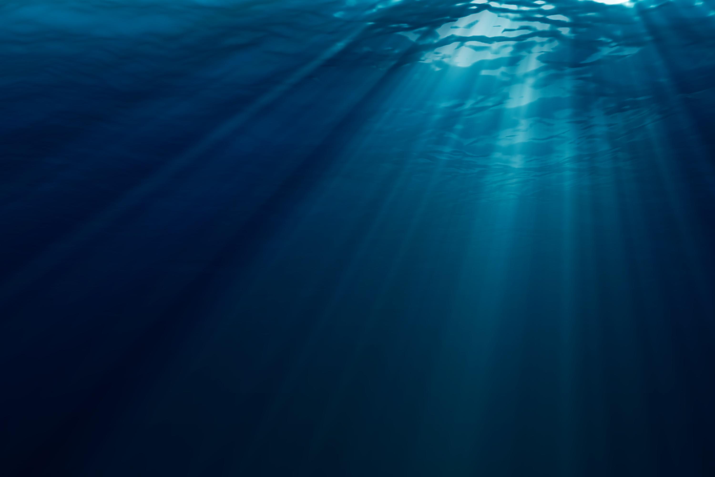 Underwater Backgrounds on Wallpapers Vista