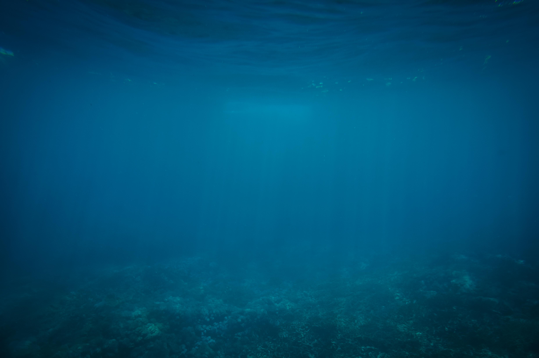 Nice wallpapers Underwater 4912x3264px